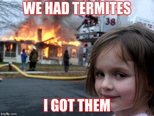 Disaster Girl Meme | WE HAD TERMITES I GOT THEM | image tagged in memes,disaster girl | made w/ Imgflip meme maker