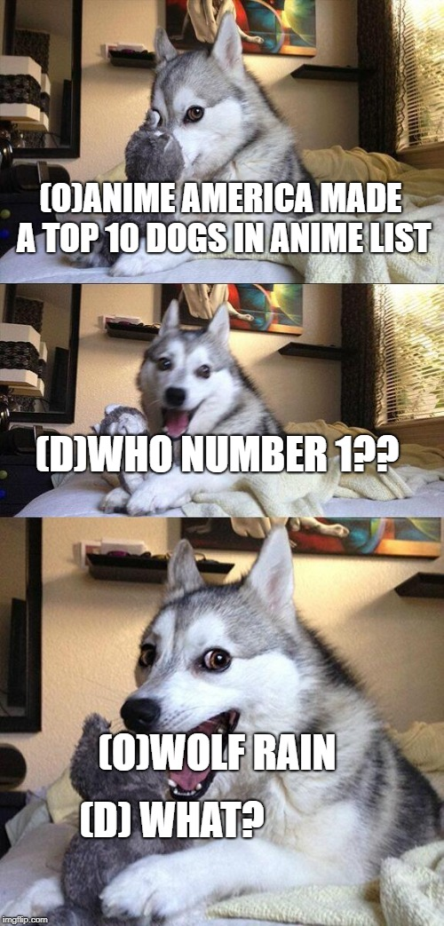 Bad Pun Dog Meme | (O)ANIME AMERICA MADE A TOP 10 DOGS IN ANIME LIST (D)WHO NUMBER 1?? (O)WOLF RAIN (D) WHAT? | image tagged in memes,bad pun dog | made w/ Imgflip meme maker