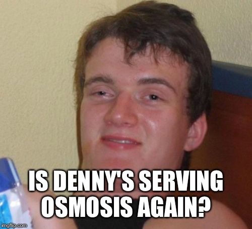 10 Guy Meme | IS DENNY'S SERVING OSMOSIS AGAIN? | image tagged in memes,10 guy | made w/ Imgflip meme maker