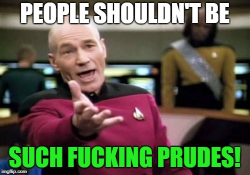 Picard Wtf Meme | PEOPLE SHOULDN'T BE SUCH F**KING PRUDES! | image tagged in memes,picard wtf | made w/ Imgflip meme maker