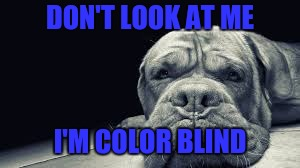 DON'T LOOK AT ME I'M COLOR BLIND | made w/ Imgflip meme maker