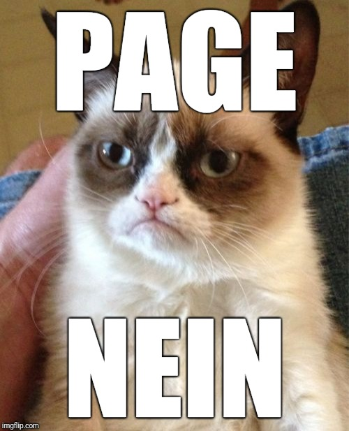 Grumpy Cat Meme | PAGE NEIN | image tagged in memes,grumpy cat | made w/ Imgflip meme maker