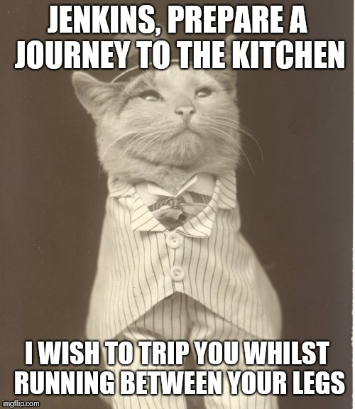 Aristocat | JENKINS, PREPARE A JOURNEY TO THE KITCHEN I WISH TO TRIP YOU WHILST RUNNING BETWEEN YOUR LEGS | image tagged in aristocat | made w/ Imgflip meme maker