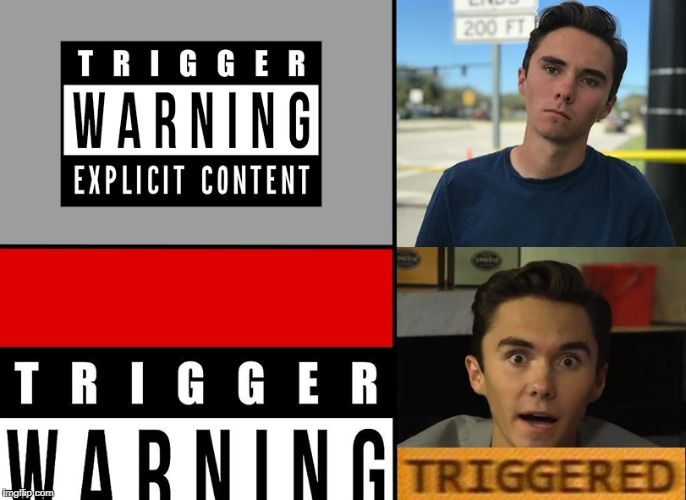 The Triggering | image tagged in trigger warning,triggered,trigger,gun control,david hogg | made w/ Imgflip meme maker