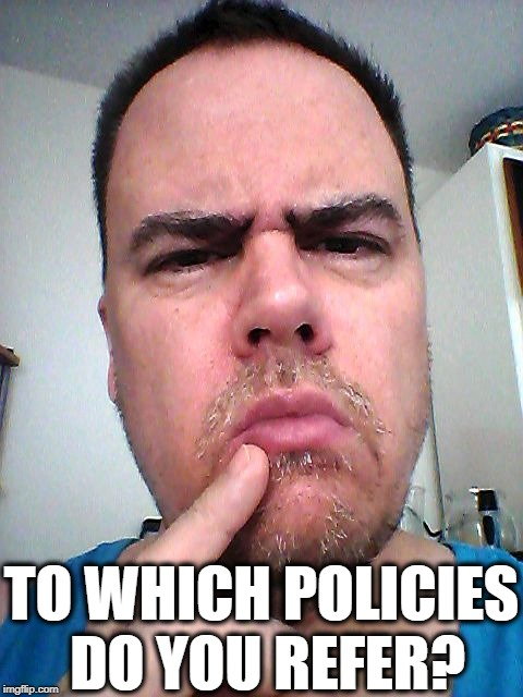 puzzled | TO WHICH POLICIES DO YOU REFER? | image tagged in puzzled | made w/ Imgflip meme maker