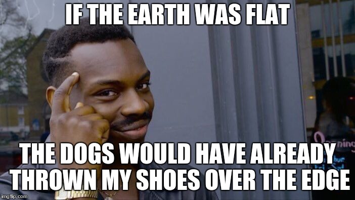 Roll Safe Think About It Meme | IF THE EARTH WAS FLAT THE DOGS WOULD HAVE ALREADY THROWN MY SHOES OVER THE EDGE | image tagged in memes,roll safe think about it | made w/ Imgflip meme maker