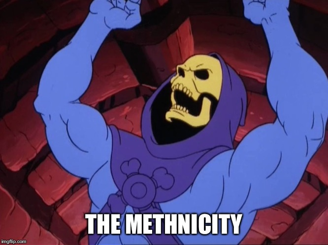Skeletor | THE METHNICITY | image tagged in skeletor | made w/ Imgflip meme maker