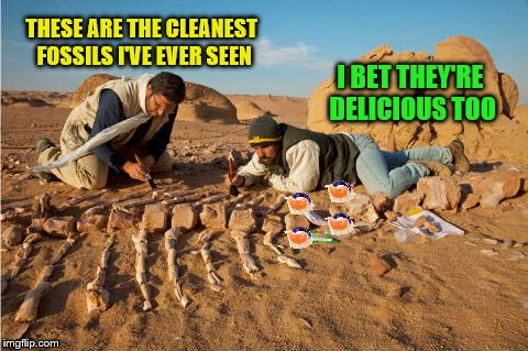 THESE ARE THE CLEANEST FOSSILS I'VE EVER SEEN I BET THEY'RE DELICIOUS TOO | made w/ Imgflip meme maker