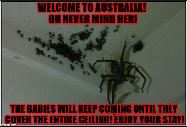 WELCOME TO AUSTRALIA! OH NEVER MIND HER! THE BABIES WILL KEEP COMING UNTIL THEY COVER THE ENTIRE CEILING! ENJOY YOUR STAY! | image tagged in welcome to australia | made w/ Imgflip meme maker