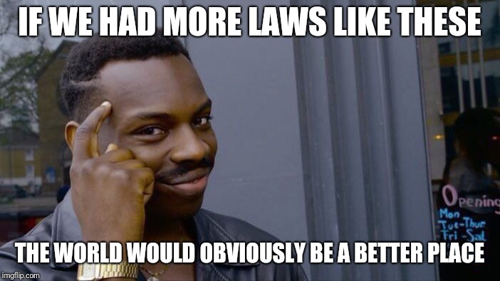 Roll Safe Think About It Meme | IF WE HAD MORE LAWS LIKE THESE THE WORLD WOULD OBVIOUSLY BE A BETTER PLACE | image tagged in memes,roll safe think about it | made w/ Imgflip meme maker