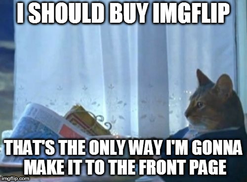 I Should Buy A Boat Cat Meme | I SHOULD BUY IMGFLIP THAT'S THE ONLY WAY I'M GONNA MAKE IT TO THE FRONT PAGE | image tagged in memes,i should buy a boat cat,imgflip | made w/ Imgflip meme maker