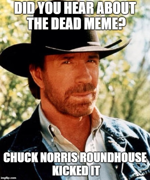 Dead memes week! A thecoffeemaster and SilicaSandwhich event! (March 23-29) | DID YOU HEAR ABOUT THE DEAD MEME? CHUCK NORRIS ROUNDHOUSE KICKED IT | image tagged in chuck norris fact,chuck norris,dead memes week,memes | made w/ Imgflip meme maker