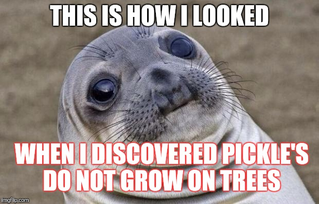 Awkward Moment Sealion Meme | THIS IS HOW I LOOKED WHEN I DISCOVERED PICKLE'S DO NOT GROW ON TREES | image tagged in memes,awkward moment sealion | made w/ Imgflip meme maker