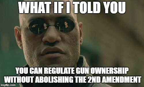 Matrix Morpheus Meme | WHAT IF I TOLD YOU YOU CAN REGULATE GUN OWNERSHIP WITHOUT ABOLISHING THE 2ND AMENDMENT | image tagged in memes,matrix morpheus | made w/ Imgflip meme maker