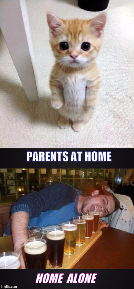 Multiple Personalities | PARENTS AT HOME HOME  ALONE | image tagged in funny memes,hilarious,parents,drinking,cute cat | made w/ Imgflip meme maker