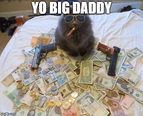 Pimp Cat Big Daddy Catnip | YO BIG DADDY | image tagged in pimp cat big daddy catnip | made w/ Imgflip meme maker