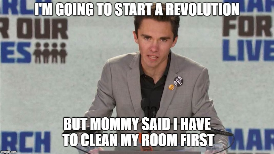 I'M GOING TO START A REVOLUTION BUT MOMMY SAID I HAVE TO CLEAN MY ROOM FIRST | image tagged in david hogg | made w/ Imgflip meme maker