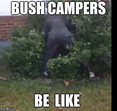BUSH CAMPERS BE  LIKE | image tagged in fortnit bush | made w/ Imgflip meme maker