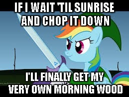 IF I WAIT 'TIL SUNRISE AND CHOP IT DOWN I'LL FINALLY GET MY VERY OWN MORNING WOOD | made w/ Imgflip meme maker
