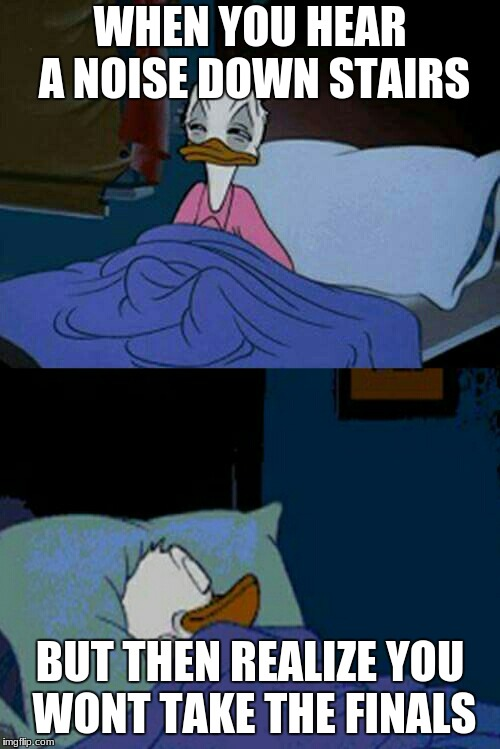 sleepy donald duck in bed | WHEN YOU HEAR A NOISE DOWN STAIRS BUT THEN REALIZE YOU WONT TAKE THE FINALS | image tagged in sleepy donald duck in bed | made w/ Imgflip meme maker
