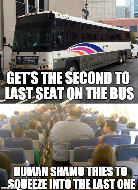 My Daily Commute with NJ Transit : newjersey