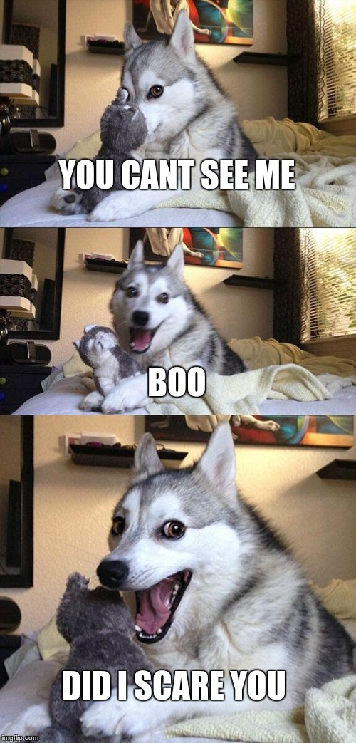 Bad Pun Dog Meme | YOU CANT SEE ME BOO DID I SCARE YOU | image tagged in memes,bad pun dog | made w/ Imgflip meme maker