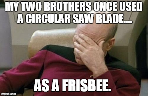 Captain Picard Facepalm Meme | MY TWO BROTHERS ONCE USED A CIRCULAR SAW BLADE.... AS A FRISBEE. | image tagged in memes,captain picard facepalm | made w/ Imgflip meme maker