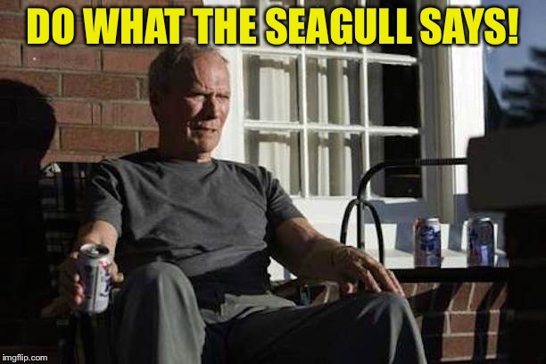 DO WHAT THE SEAGULL SAYS! | made w/ Imgflip meme maker