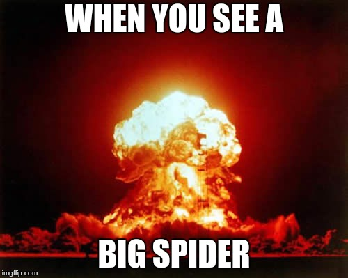 Nuclear Explosion Meme | WHEN YOU SEE A BIG SPIDER | image tagged in memes,nuclear explosion | made w/ Imgflip meme maker