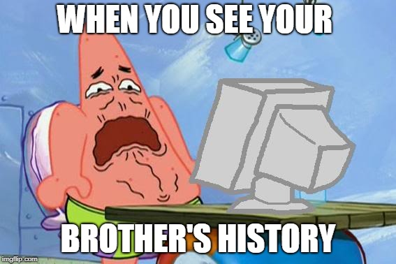 Patrick Star Internet Disgust | WHEN YOU SEE YOUR BROTHER'S HISTORY | image tagged in patrick star internet disgust | made w/ Imgflip meme maker