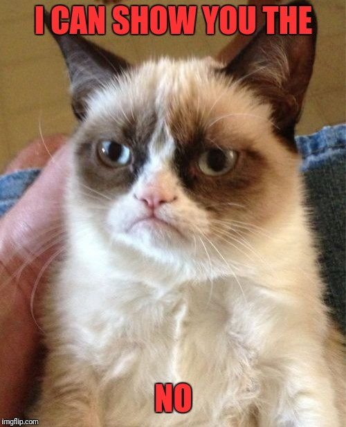 Grumpy Cat Meme | I CAN SHOW YOU THE NO | image tagged in memes,grumpy cat | made w/ Imgflip meme maker