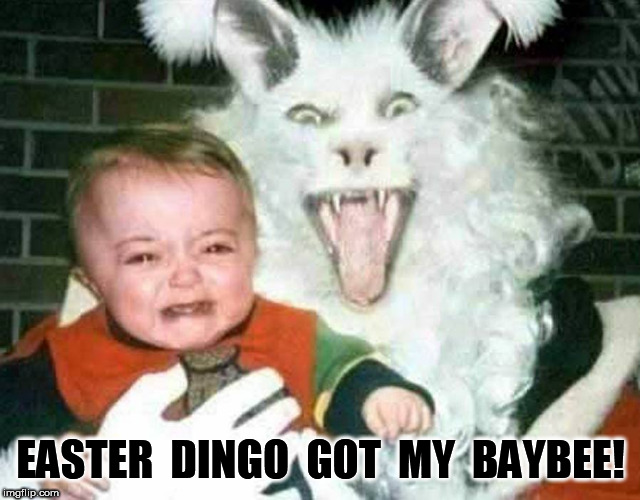 Easter Dingo Got My Baybee | EASTER  DINGO  GOT  MY  BAYBEE! | image tagged in easter,dingo,baby | made w/ Imgflip meme maker