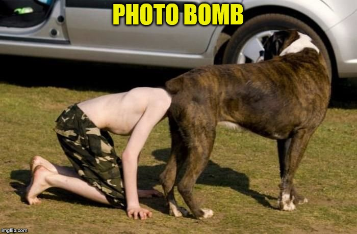 Boxer Butt | PHOTO BOMB | image tagged in boxer butt | made w/ Imgflip meme maker