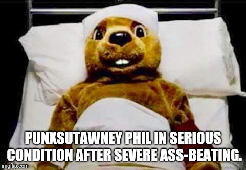 Punxsutawney Phil  | PUNXSUTAWNEY PHIL IN SERIOUS CONDITION AFTER SEVERE ASS-BEATING. | image tagged in punxsutawney phil,hospital,spring,winter,ass beating | made w/ Imgflip meme maker