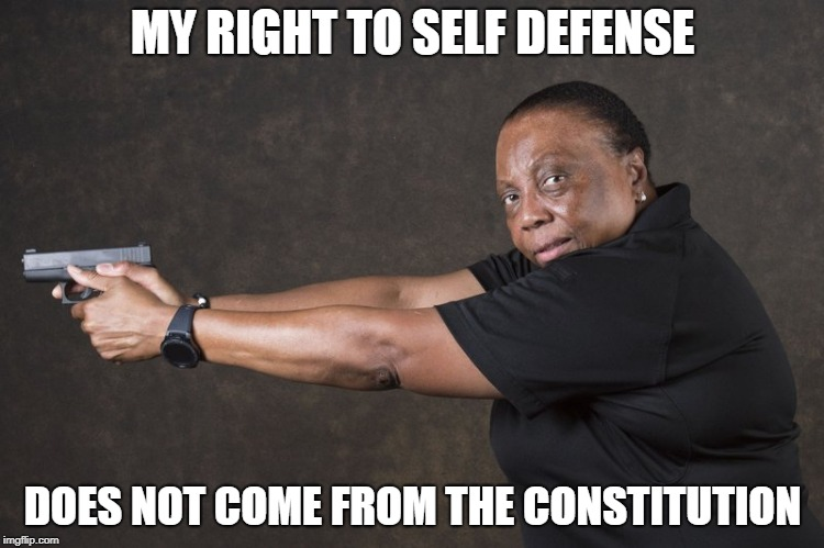 Repeal THIS | MY RIGHT TO SELF DEFENSE DOES NOT COME FROM THE CONSTITUTION | image tagged in guns | made w/ Imgflip meme maker