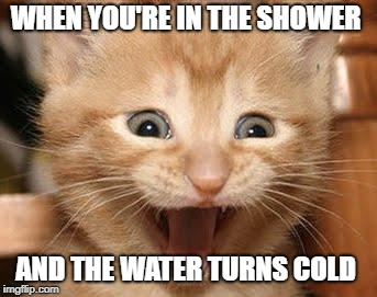 Excited Cat | WHEN YOU'RE IN THE SHOWER AND THE WATER TURNS COLD | image tagged in memes,excited cat | made w/ Imgflip meme maker