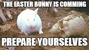 The Easter Bunny Awaits You All with Nasty, Big Pointy Teeth | THE EASTER BUNNY IS COMMING PREPARE YOURSELVES | image tagged in monty python and the holy grail,killer rabbit,easter | made w/ Imgflip meme maker