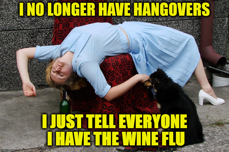 neighbor lady told me this | I NO LONGER HAVE HANGOVERS I JUST TELL EVERYONE I HAVE THE WINE FLU | image tagged in hangovers,drunk,euphemisms | made w/ Imgflip meme maker