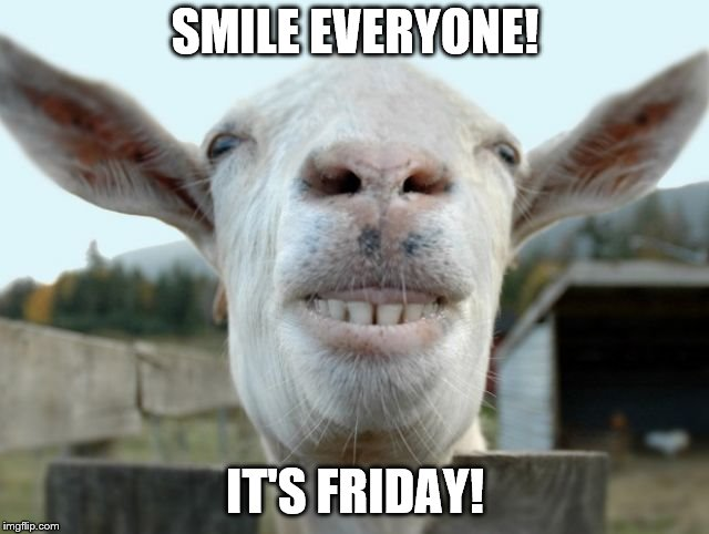 Hi I'm mr smiley goat | SMILE EVERYONE! IT'S FRIDAY! | image tagged in mr smiles a lot,smile,friday | made w/ Imgflip meme maker