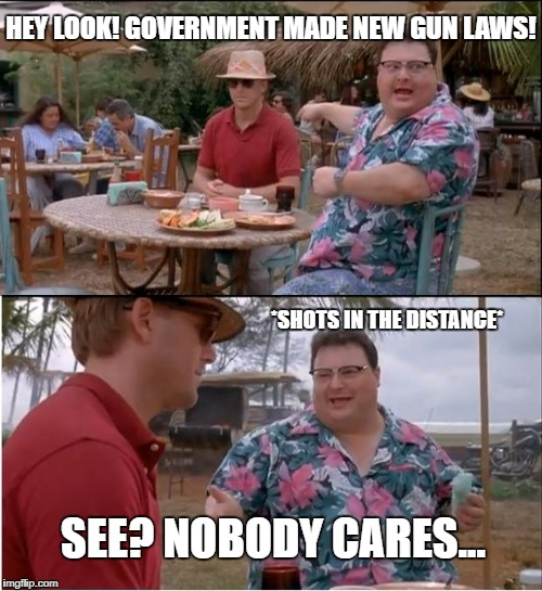 See Nobody Cares Meme | HEY LOOK! GOVERNMENT MADE NEW GUN LAWS! SEE? NOBODY CARES... *SHOTS IN THE DISTANCE* | image tagged in memes,see nobody cares | made w/ Imgflip meme maker