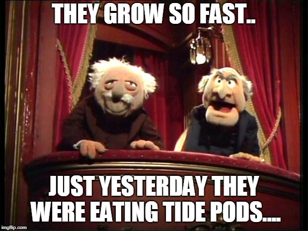 Muppets | THEY GROW SO FAST.. JUST YESTERDAY THEY WERE EATING TIDE PODS.... | image tagged in muppets | made w/ Imgflip meme maker