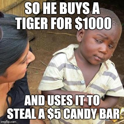 Third World Skeptical Kid Meme | SO HE BUYS A TIGER FOR $1000 AND USES IT TO STEAL A $5 CANDY BAR | image tagged in memes,third world skeptical kid | made w/ Imgflip meme maker