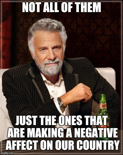 The Most Interesting Man In The World Meme | NOT ALL OF THEM JUST THE ONES THAT ARE MAKING A NEGATIVE AFFECT ON OUR COUNTRY | image tagged in memes,the most interesting man in the world | made w/ Imgflip meme maker