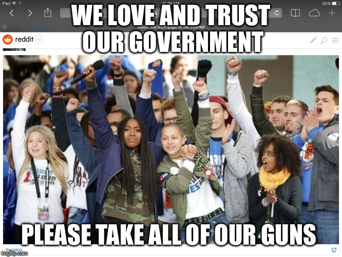 Protest |  WE LOVE AND TRUST  OUR GOVERNMENT; PLEASE TAKE ALL OF OUR GUNS | image tagged in usa | made w/ Imgflip meme maker