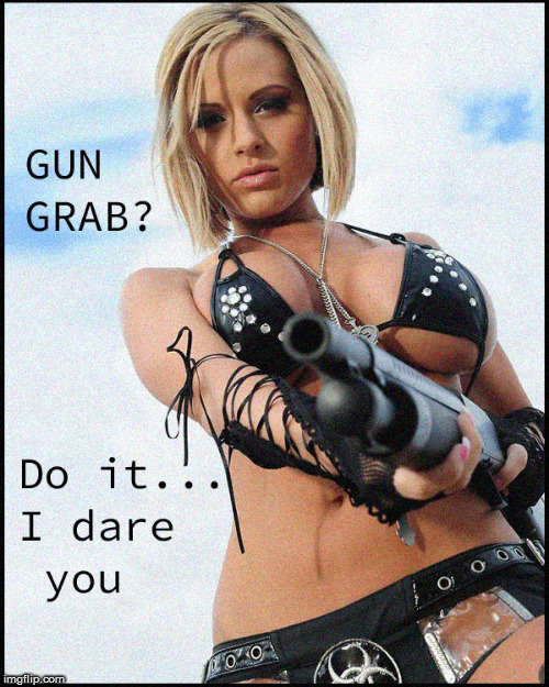 Gun Grab ? | image tagged in girls with guns,2nd amendment,current events,hot babes,politics lol,funny memes | made w/ Imgflip meme maker