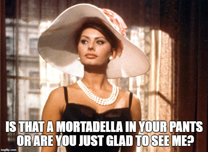 IS THAT A MORTADELLA IN YOUR PANTS OR ARE YOU JUST GLAD TO SEE ME? | image tagged in sophia loren | made w/ Imgflip meme maker