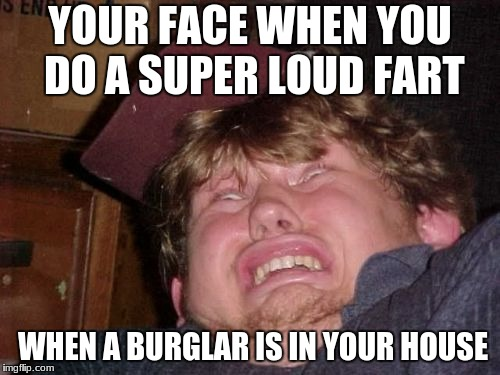 WTF Meme | YOUR FACE WHEN YOU DO A SUPER LOUD FART WHEN A BURGLAR IS IN YOUR HOUSE | image tagged in memes,wtf | made w/ Imgflip meme maker