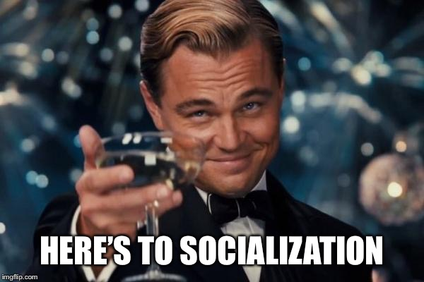Leonardo Dicaprio Cheers Meme | HERE'S TO SOCIALIZATION | image tagged in memes,leonardo dicaprio cheers | made w/ Imgflip meme maker
