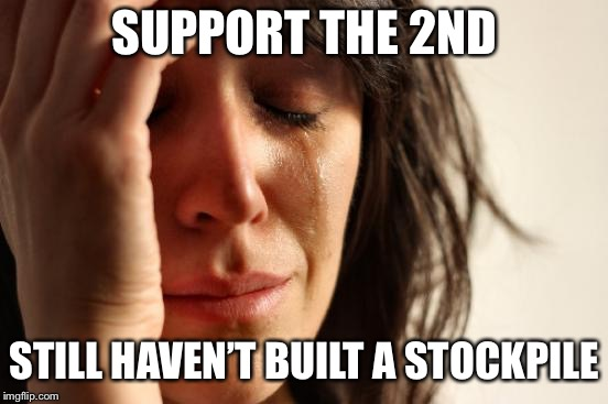 First World Problems Meme | SUPPORT THE 2ND STILL HAVEN'T BUILT A STOCKPILE | image tagged in memes,first world problems | made w/ Imgflip meme maker