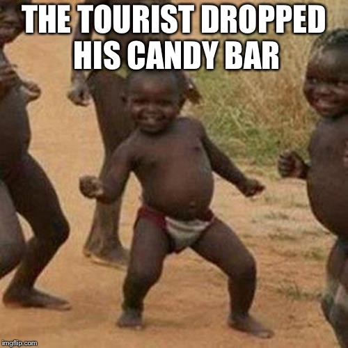 Third World Success Kid |  THE TOURIST DROPPED HIS CANDY BAR | image tagged in memes,third world success kid | made w/ Imgflip meme maker